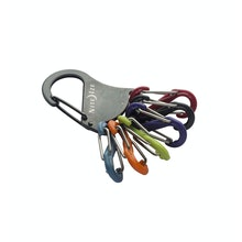 Robust, multi-clip karabiner key ring.