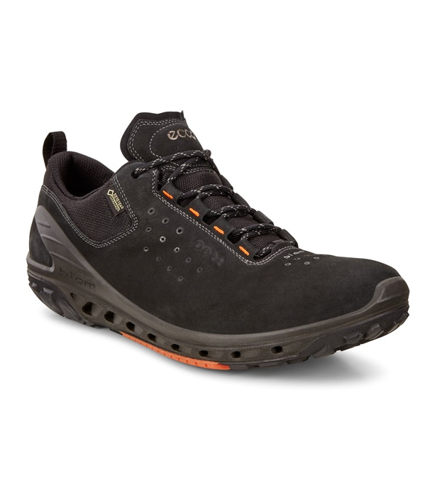 eaefc9ebe60 Women s Ecco Biom Venture Gritty GTX - Sporty lace-up